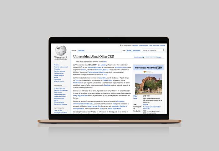 institucion universidad wikipedia